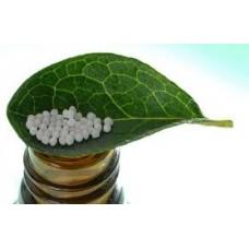 Арсеникум альбум при коронавирусе.